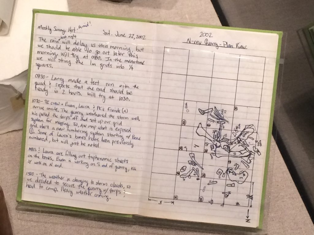 Field notebook. Smithsonian National Museum of Natural History, Washington, D.C.